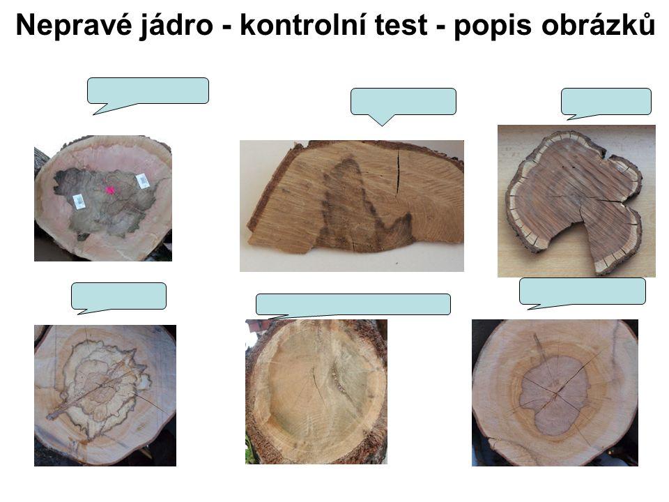 Nepravé jádro - kontrolní test - popis obrázků