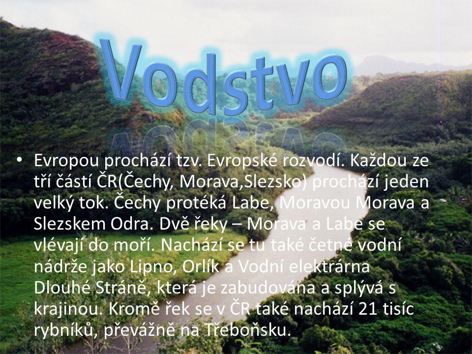 Na území České Republiky se nachází četná pohoří. V českých horách také pramení dva evropské veletoky Vltava a Labe. Nejvyšší pohoří jsou Krkonoše, dá