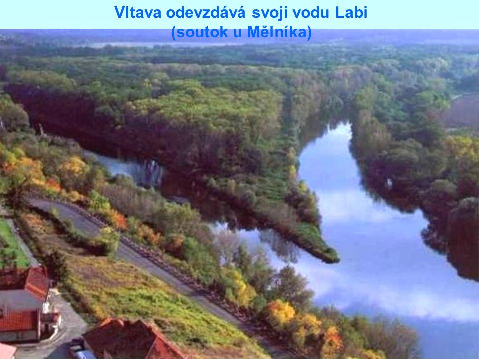 Vltava odevzdává svoji vodu Labi (soutok u Mělníka)