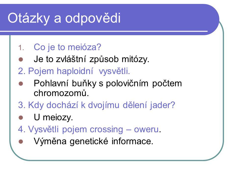Otázky a odpovědi 1. Co je to meióza. Je to zvláštní způsob mitózy.