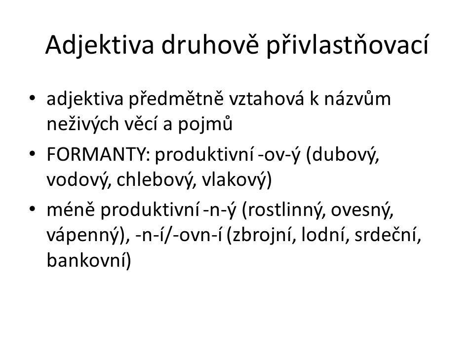 Adjektiva druhově přivlastňovací adjektiva předmětně vztahová k názvům neživých věcí a pojmů FORMANTY: produktivní -ov-ý (dubový, vodový, chlebový, vl