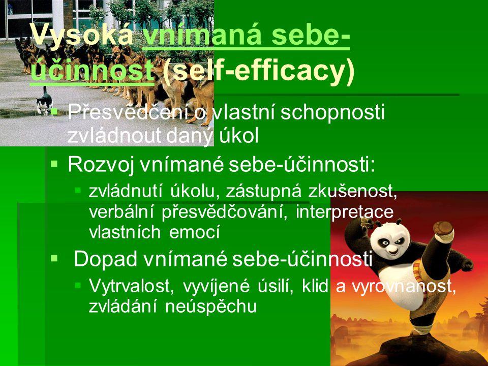 Vysoká vnímaná sebe- účinnost (self-efficacy)vnímaná sebe- účinnost   Přesvědčení o vlastní schopnosti zvládnout daný úkol   Rozvoj vnímané sebe-ú