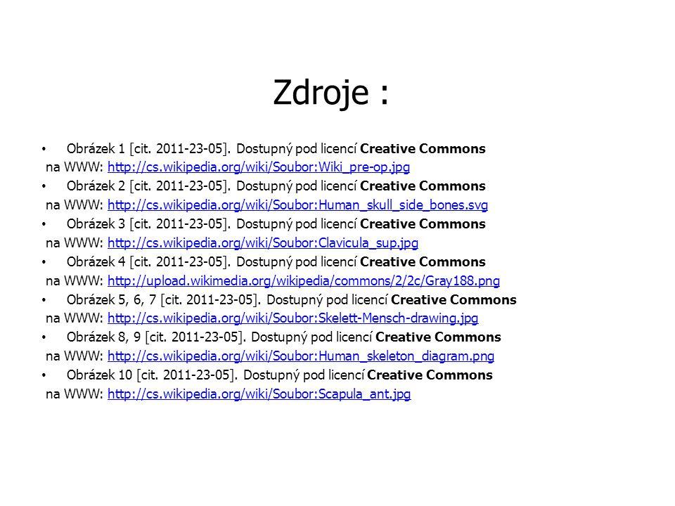 Zdroje : Obrázek 1 [cit. 2011-23-05]. Dostupný pod licencí Creative Commons na WWW: http://cs.wikipedia.org/wiki/Soubor:Wiki_pre-op.jpghttp://cs.wikip