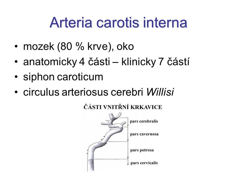 Arteria carotis interna mozek (80 % krve), oko anatomicky 4 části – klinicky 7 částí siphon caroticum circulus arteriosus cerebri Willisi