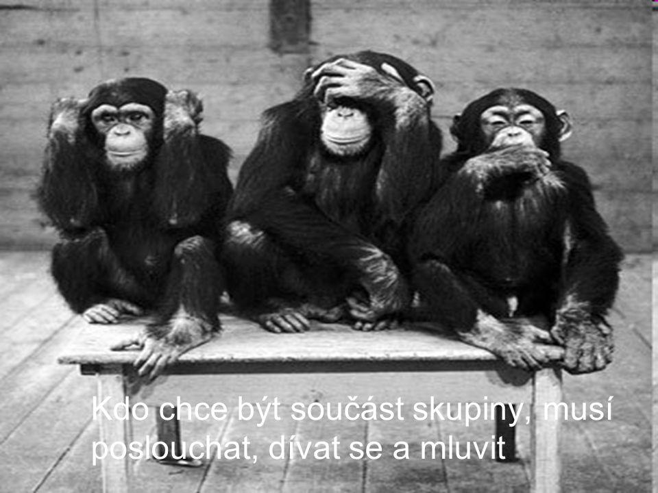 Kdo chce být součást skupiny, musí poslouchat, dívat se a mluvit