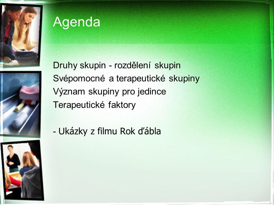 Agenda Druhy skupin - rozdělení skupin Svépomocné a terapeutické skupiny Význam skupiny pro jedince Terapeutické faktory - U kázky z filmu Rok ďábla