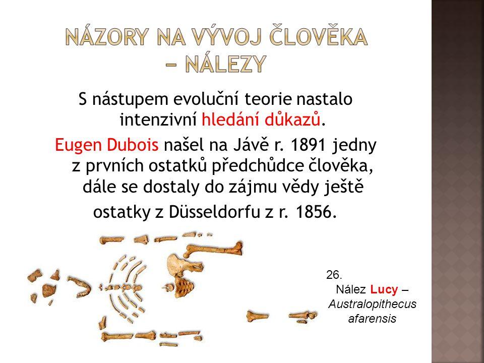 S nástupem evoluční teorie nastalo intenzivní hledání důkazů.