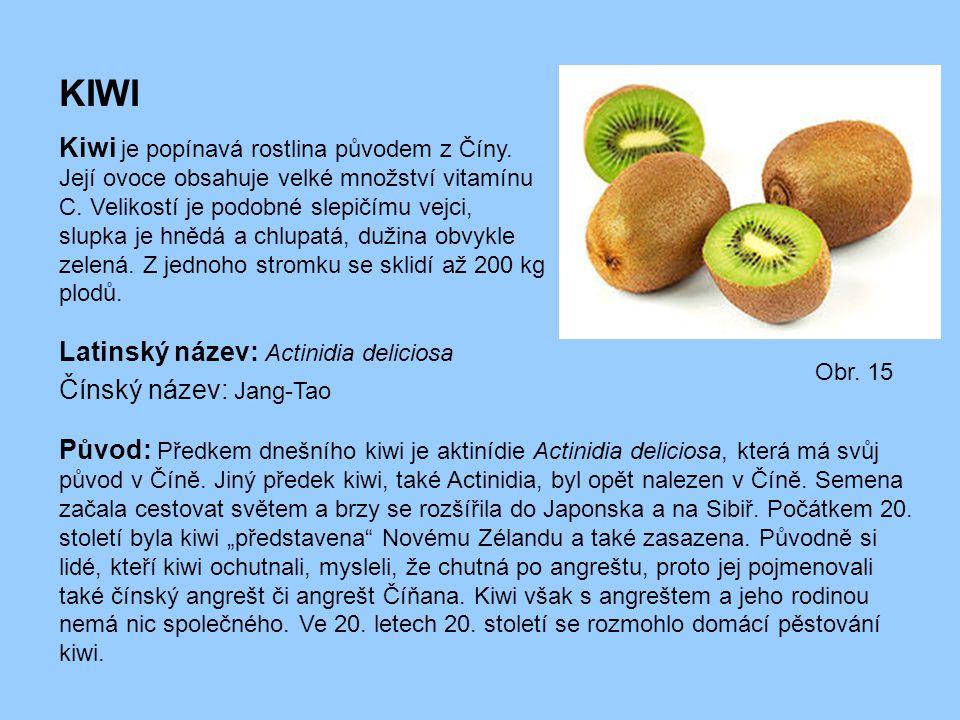 KIWI Kiwi je popínavá rostlina původem z Číny. Její ovoce obsahuje velké množství vitamínu C. Velikostí je podobné slepičímu vejci, slupka je hnědá a