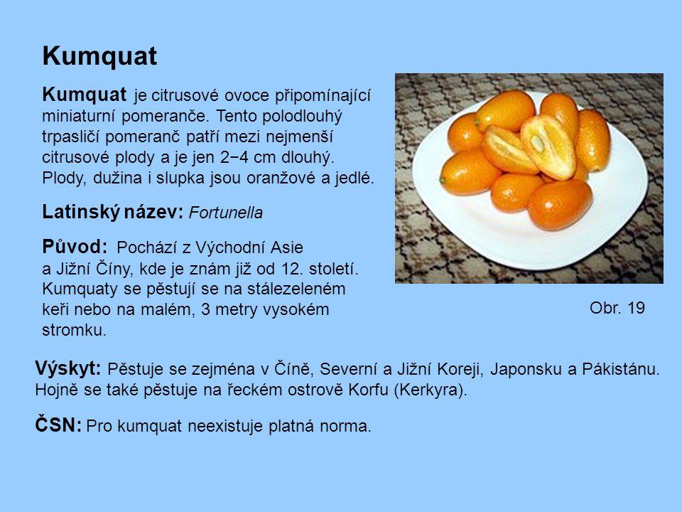 Kumquat Kumquat je citrusové ovoce připomínající miniaturní pomeranče. Tento polodlouhý trpasličí pomeranč patří mezi nejmenší citrusové plody a je je
