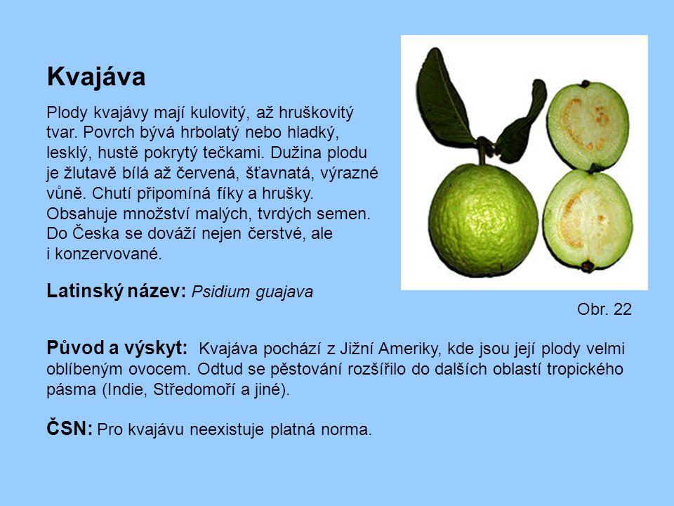 Kvajáva Plody kvajávy mají kulovitý, až hruškovitý tvar. Povrch bývá hrbolatý nebo hladký, lesklý, hustě pokrytý tečkami. Dužina plodu je žlutavě bílá