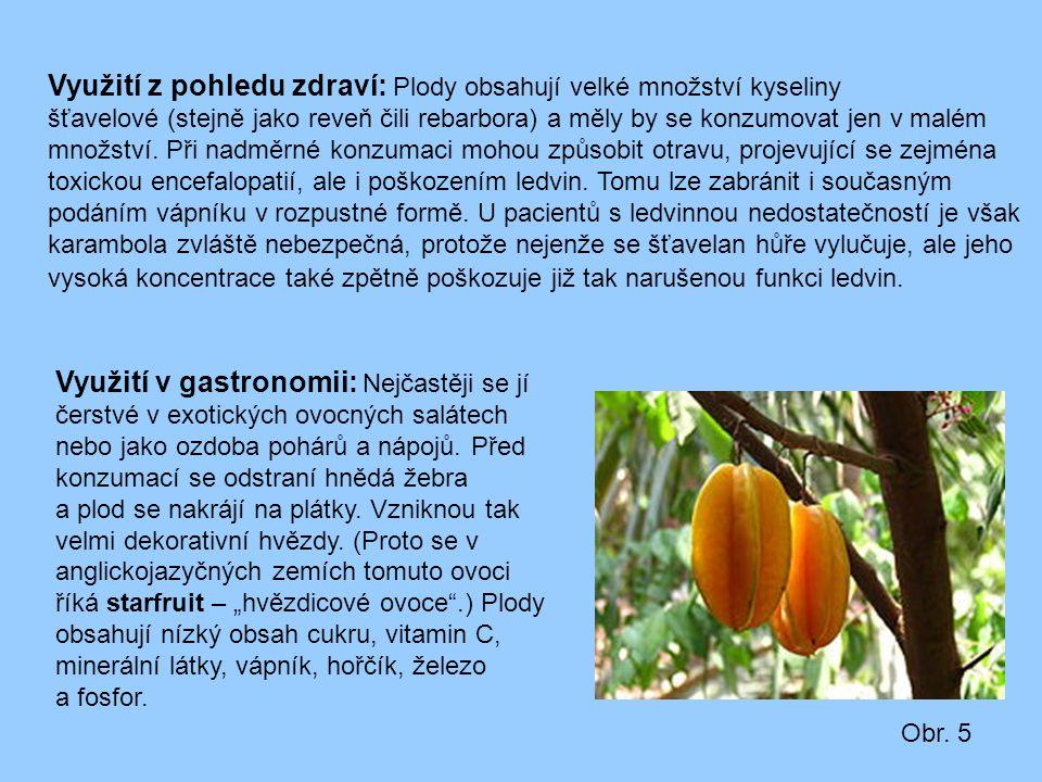 Využití z pohledu zdraví: Plody obsahují velké množství kyseliny šťavelové (stejně jako reveň čili rebarbora) a měly by se konzumovat jen v malém množ