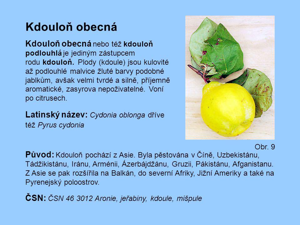 Kdouloň obecná Kdouloň obecná nebo též kdouloň podlouhlá je jediným zástupcem rodu kdouloň. Plody (kdoule) jsou kulovité až podlouhlé malvice žluté ba