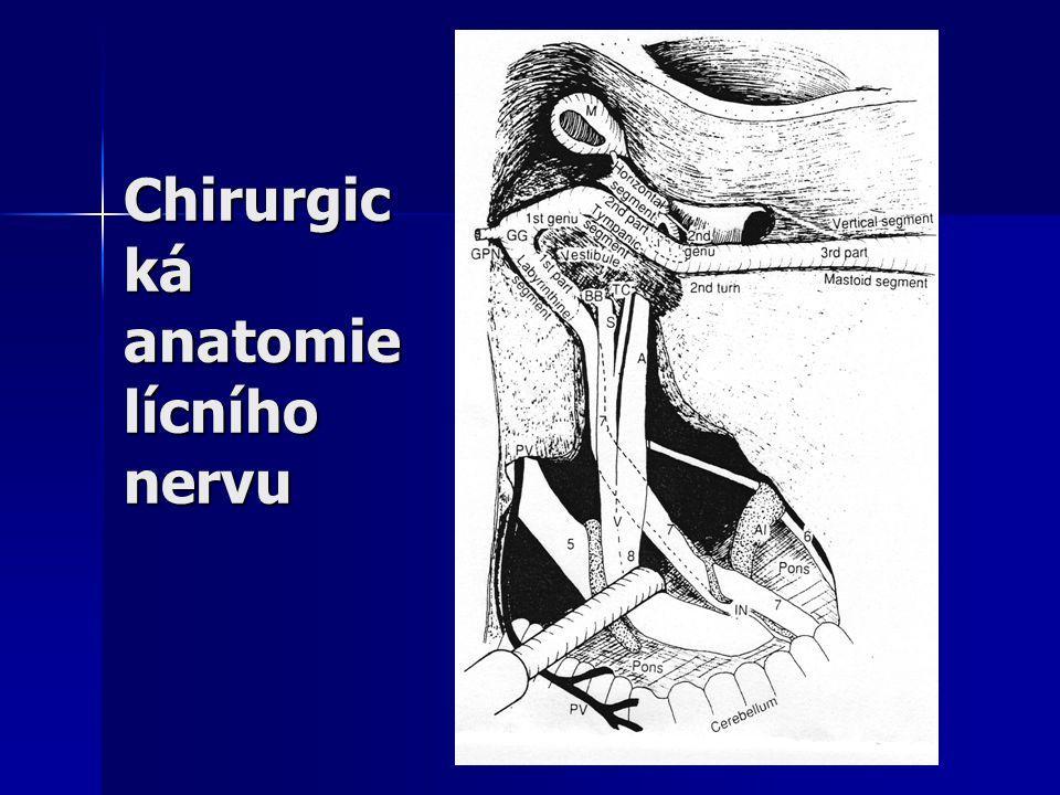 Chirurgic ká anatomie lícního nervu