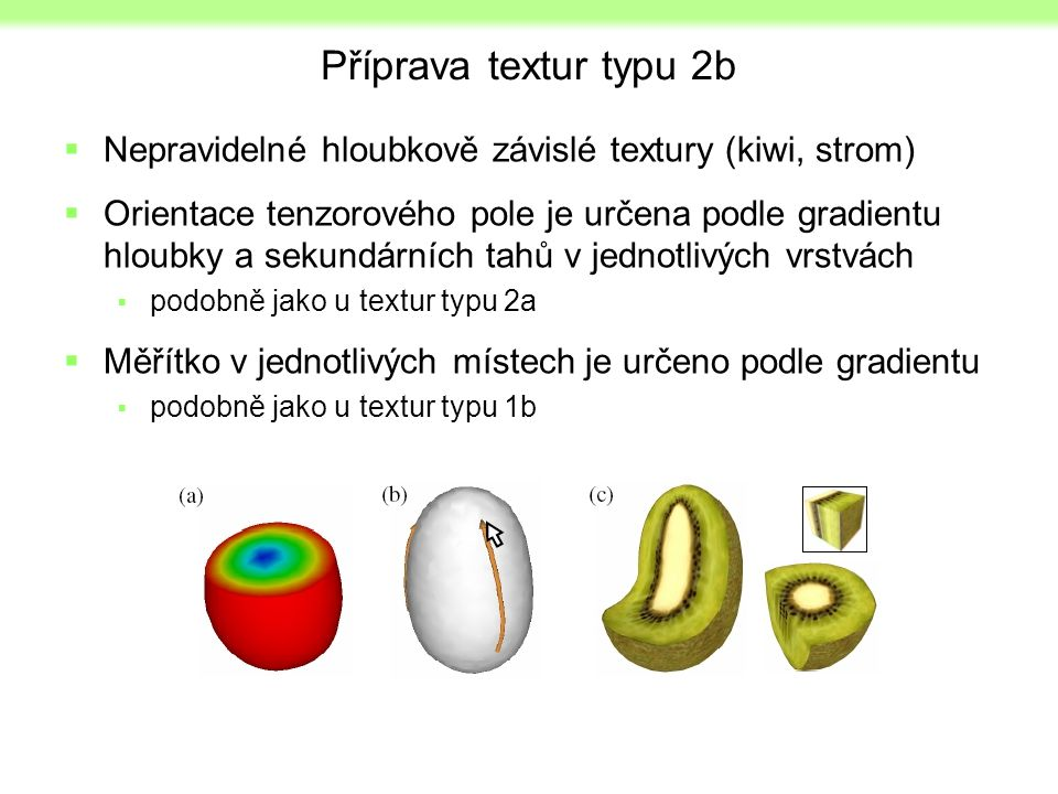 Příprava textur typu 2b  Nepravidelné hloubkově závislé textury (kiwi, strom)  Orientace tenzorového pole je určena podle gradientu hloubky a sekundárních tahů v jednotlivých vrstvách  podobně jako u textur typu 2a  Měřítko v jednotlivých místech je určeno podle gradientu  podobně jako u textur typu 1b