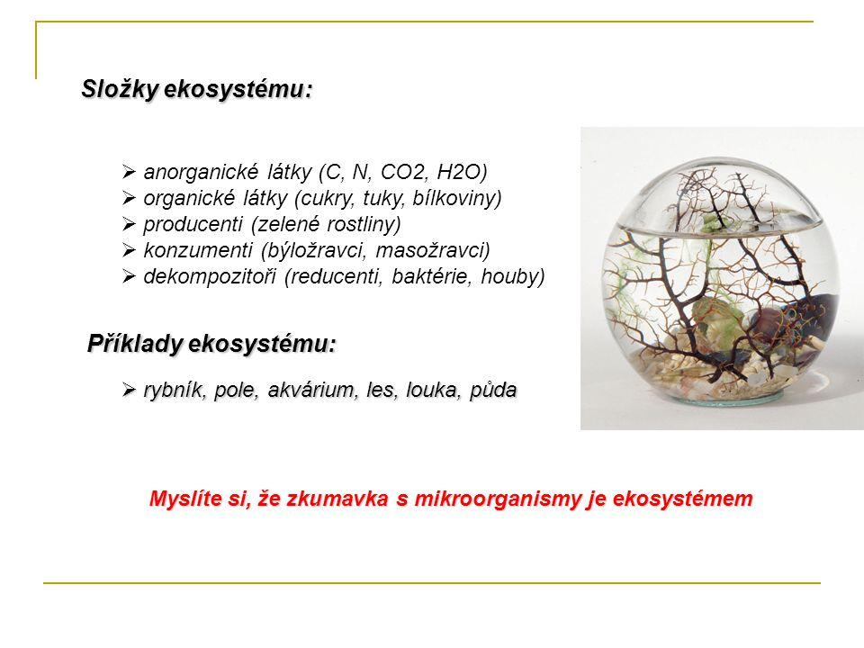 Složky ekosystému:  anorganické látky (C, N, CO2, H2O)  organické látky (cukry, tuky, bílkoviny)  producenti (zelené rostliny)  konzumenti (býložr