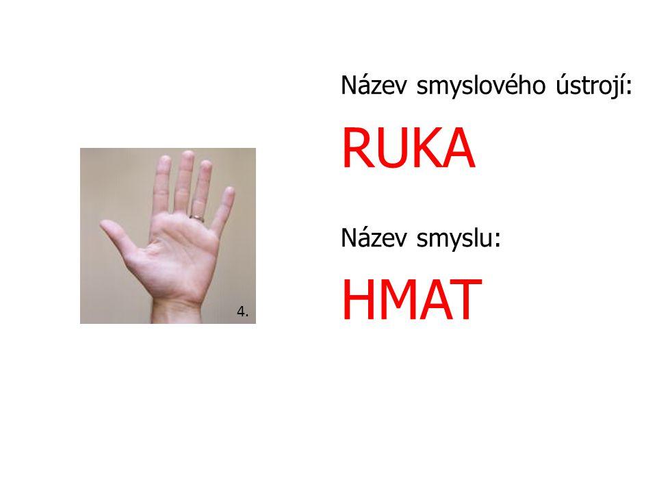 Název smyslového ústrojí: RUKA Název smyslu: HMAT 4.