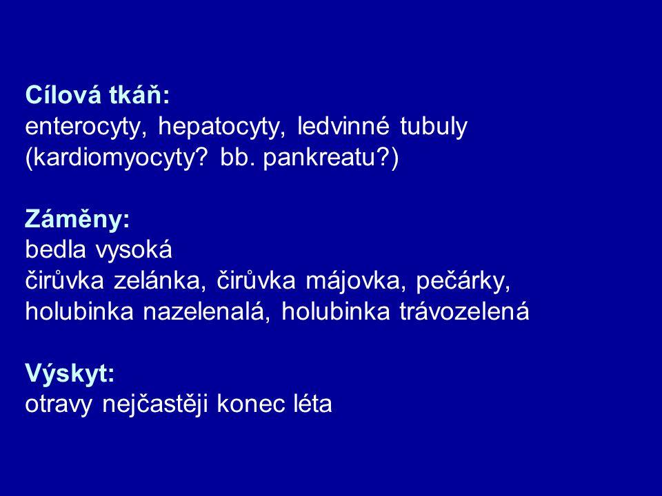 Cílová tkáň: enterocyty, hepatocyty, ledvinné tubuly (kardiomyocyty? bb. pankreatu?) Záměny: bedla vysoká čirůvka zelánka, čirůvka májovka, pečárky, h