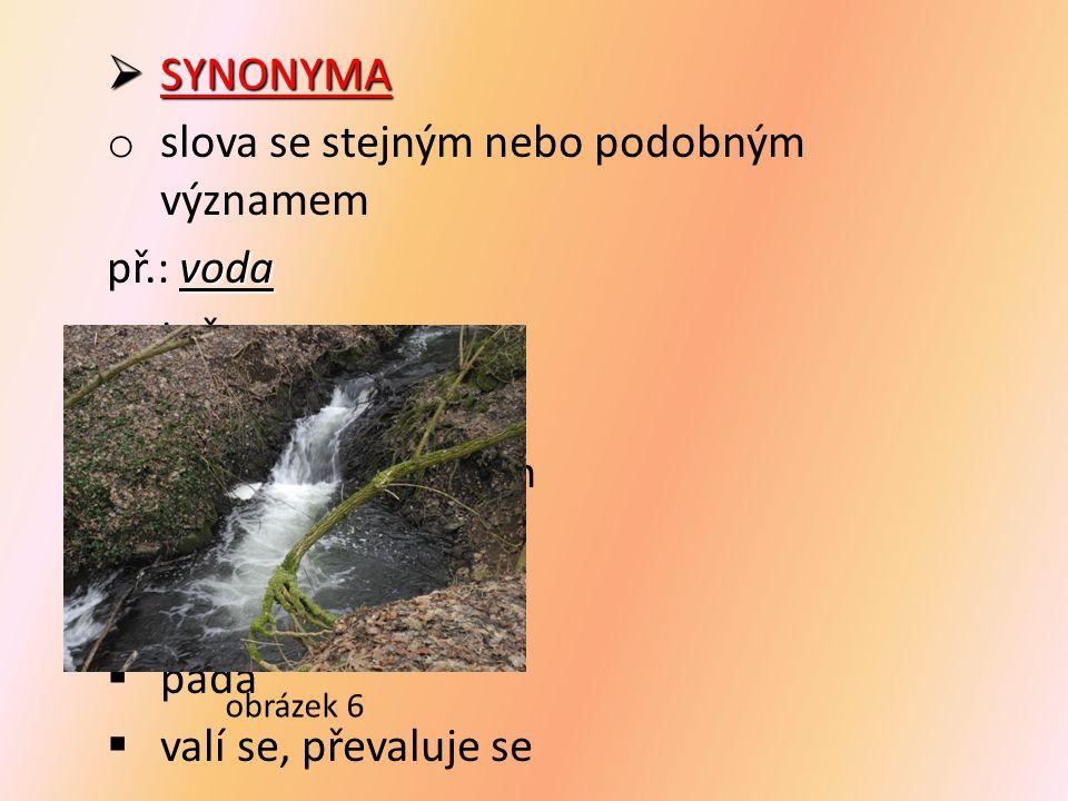  SYNONYMA o slova se stejným nebo podobným významem voda př.: voda  teče  bublá  skáče po kamenech  plyne  utíká  padá  valí se, převaluje se