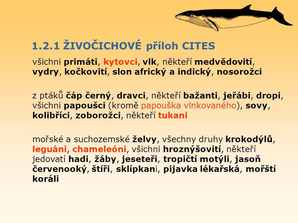 1.2.1 ŽIVOČICHOVÉ příloh CITES všichni primáti, kytovci, vlk, někteří medvědovití, vydry, kočkovití, slon africký a indický, nosorožci z ptáků čáp čer
