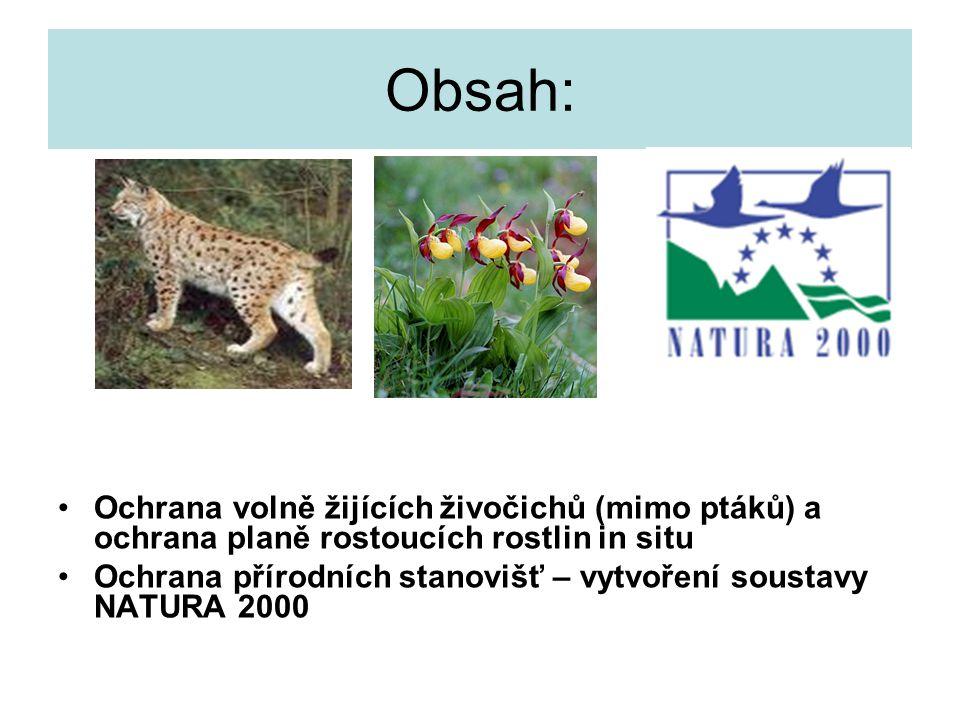 Obsah: Ochrana volně žijících živočichů (mimo ptáků) a ochrana planě rostoucích rostlin in situ Ochrana přírodních stanovišť – vytvoření soustavy NATURA 2000