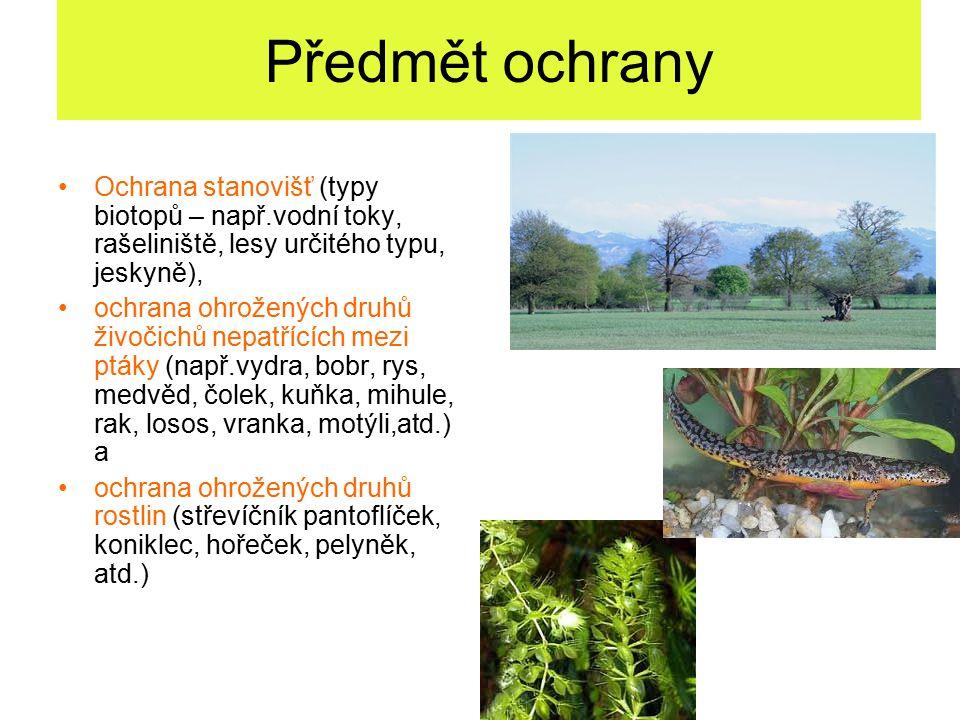 Směrnice o stanovištích – Přílohy: Příloha I – typy přírodních stanovišť + Příloha II – druhy živočichů a rostlin v zájmu Společenství, jejichž ochrana vyžaduje vyhlášení zvláštních oblastí ochrany Příloha III – kritéria pro výběr lokalit vhodných jako lokality významné pro Společenství a pro vyhlášení jako zvláštní oblasti ochrany Příloha IV – druhy živočichů a rostlin v zájmu Společenství, které vyžadují přísnou ochranu Příloha V – druhy živočichů a rostlin v zájmu Společenství, jejichž odebírání z volné přírody a využívání může být předmětem zvláštních opatření Příloha VI – zakázané metody a prostředky odchytu a usmrcování