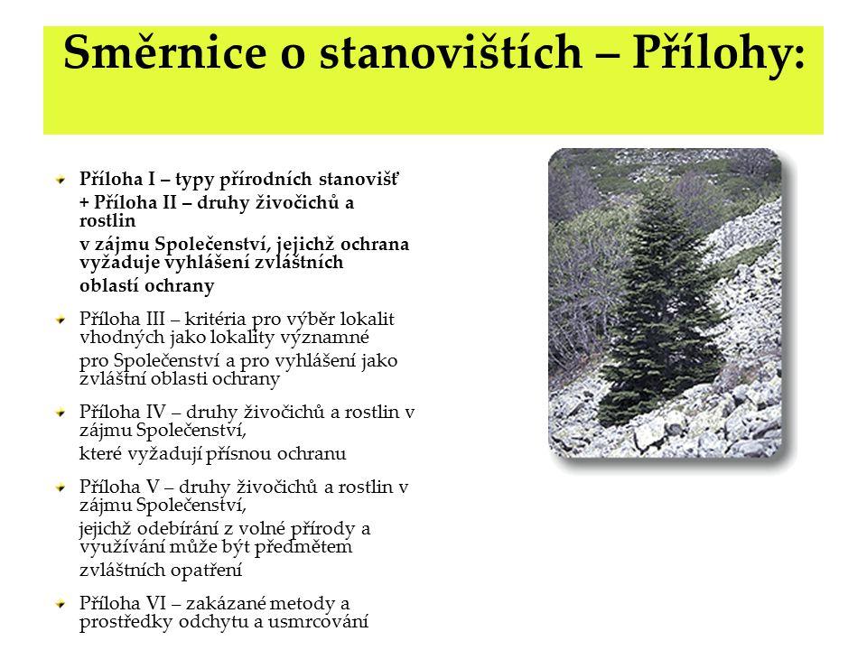Fáze zřizování evropsky významných lokalit Fáze 1: aktivity členského státu Inventarizace přírodních území Identifikace a klasifikace habitatů dle Přílohy I.