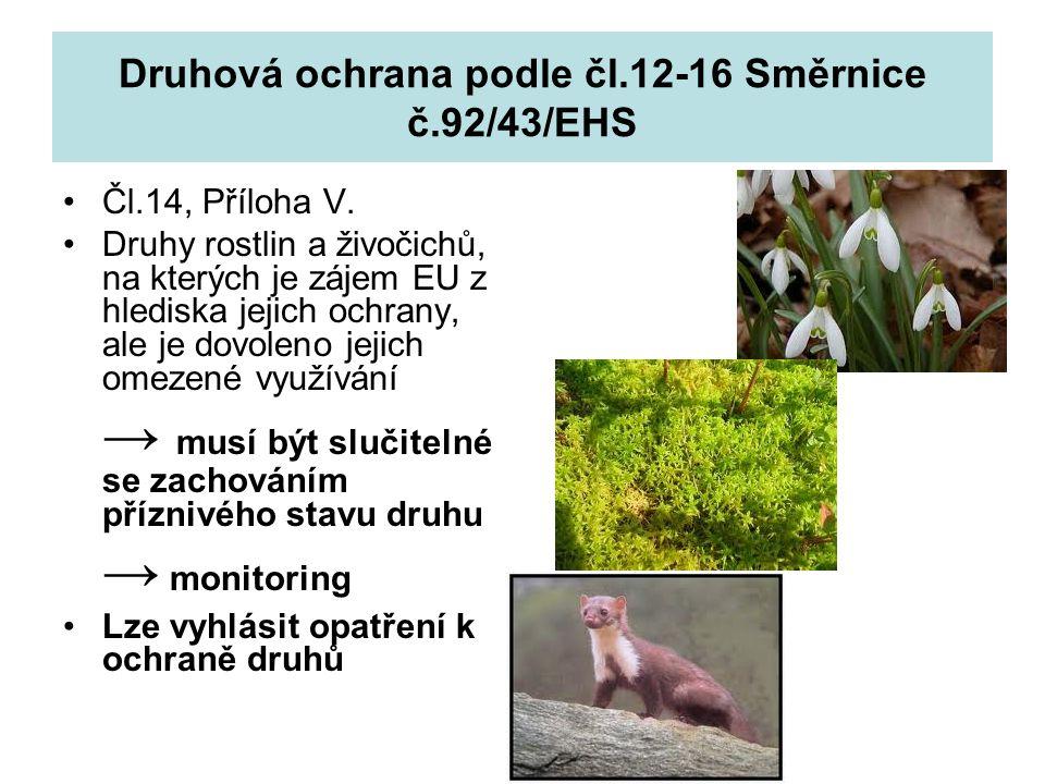 Druhová ochrana podle čl.12-16 Směrnice č.92/43/EHS Opatření: Dočasný zákaz odebírání jedinců z volné přírody a využívání určitých populací Místní zákaz odebírání jedinců z volné přírody a využívání určitých populací Regulace metod odebírání Vytvoření systému povolení k odebírání jedinců nebo systém kvót lovu Kontrola obchodu Opatření na omezení odebírání jedinců z volné přírody