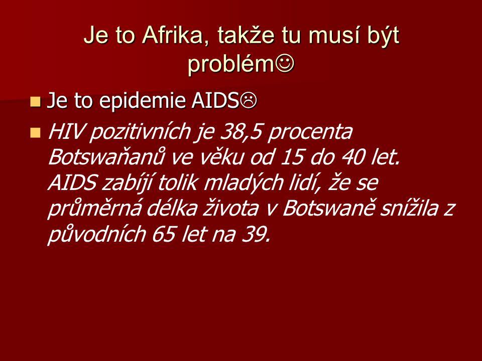 Je to Afrika, takže tu musí být problém Je to Afrika, takže tu musí být problém Je to epidemie AIDS  Je to epidemie AIDS  HIV pozitivních je 38,5 pr