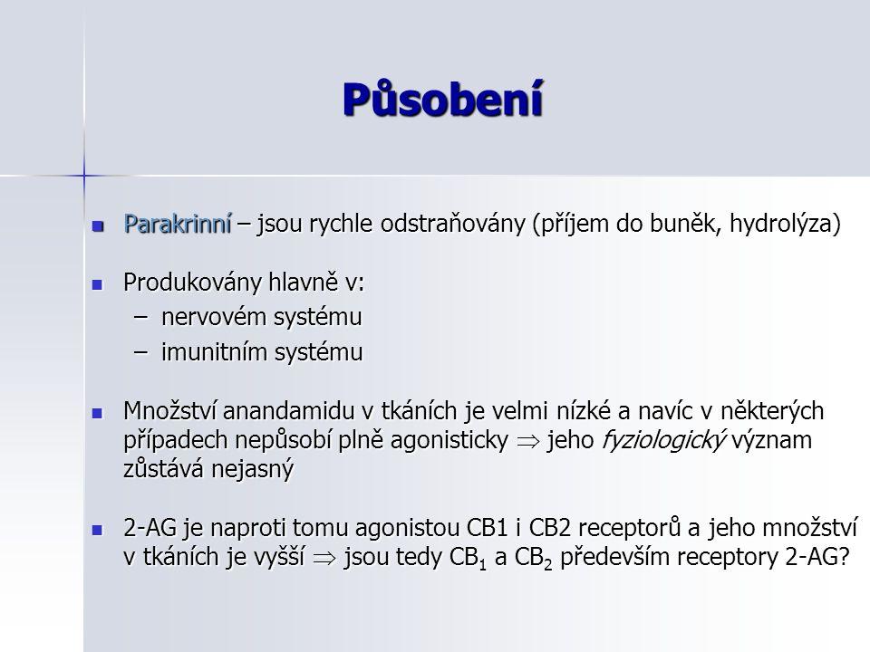 Působení Parakrinní – jsou rychle odstraňovány (příjem do buněk, hydrolýza) Parakrinní – jsou rychle odstraňovány (příjem do buněk, hydrolýza) Produko