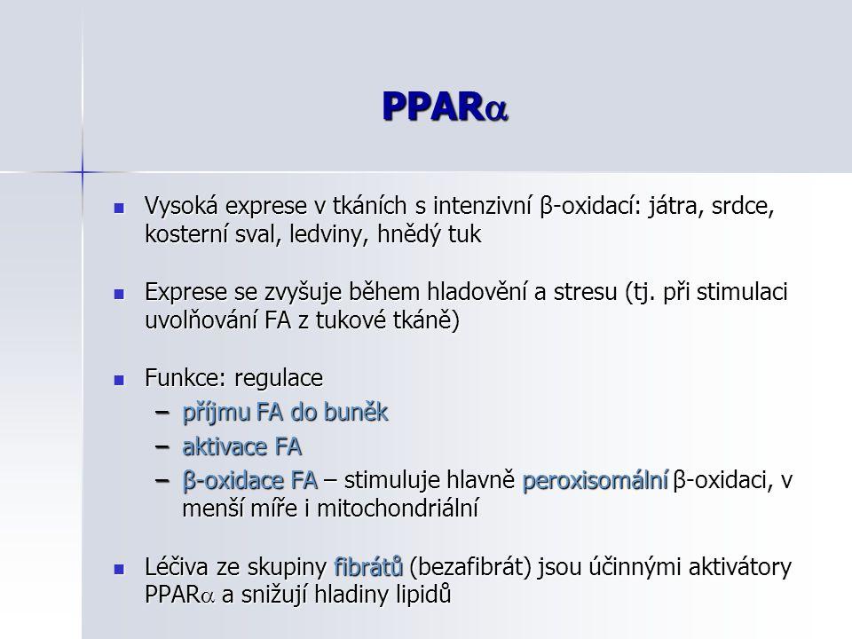 PPAR  Vysoká exprese v tkáních s intenzivní β-oxidací: játra, srdce, kosterní sval, ledviny, hnědý tuk Vysoká exprese v tkáních s intenzivní β-oxidac