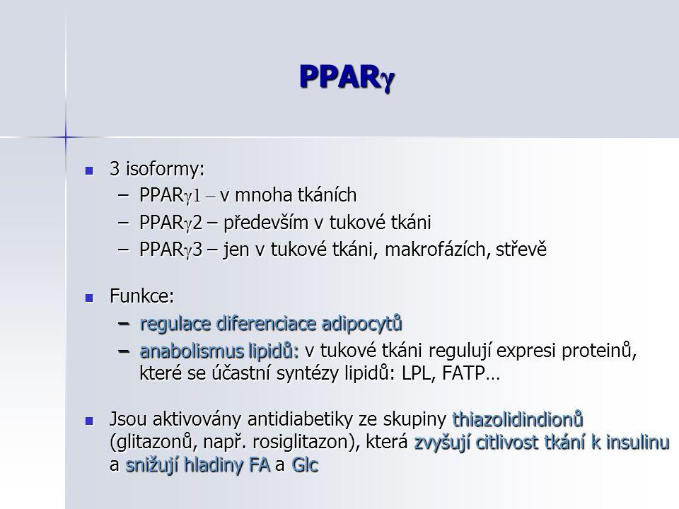 PPAR γ 3 isoformy: 3 isoformy: –PPAR γ1 – v mnoha tkáních –PPAR γ 2 – p ř edevším v tukové tkáni –PPAR γ 3 – jen v tukové tkáni, makrofázích, střevě F