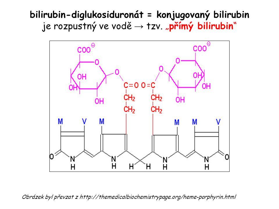 """bilirubin-diglukosiduronát = konjugovaný bilirubin je rozpustný ve vodě → tzv. """"přímý bilirubin"""" Obrázek byl převzat z http://themedicalbiochemistrypa"""