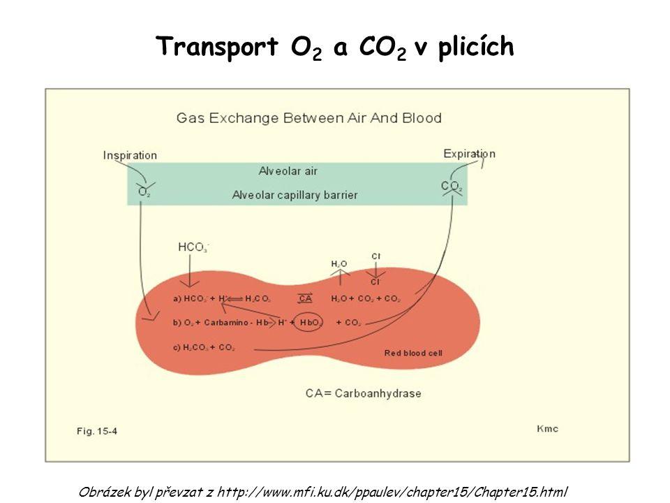 Transport O 2 a CO 2 v plicích Obrázek byl převzat z http://www.mfi.ku.dk/ppaulev/chapter15/Chapter15.html
