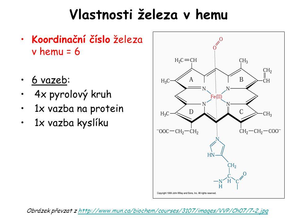 Vlastnosti železa v hemu Koordinační číslo železa v hemu = 6 6 vazeb: 4x pyrolový kruh 1x vazba na protein 1x vazba kyslíku Obrázek převzat z http://w