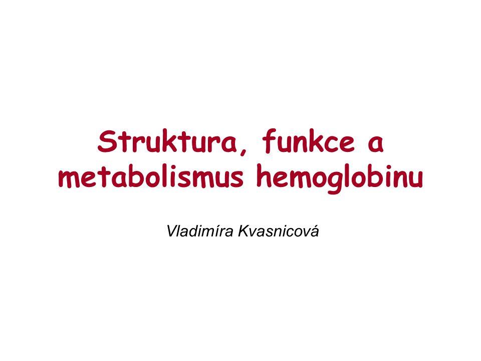 Syntéza hemoglobinu poruchy syntézy: TALASEMIE = dědičné onemocnění s narušenou tvorbou bílkovinných řetězců Hb (  nebo  talas.) ANEMIE = chudokrevnost (  kapacita krve přenášet O 2 )  sideropenická anemie – nedostatek železa  srpkovitá anemie – dědičné onemocnění s abnormálním hemoglobinem: HbS (záměna 1 aminokyseliny v  -řetězci: místo Glu obsahuje Val )