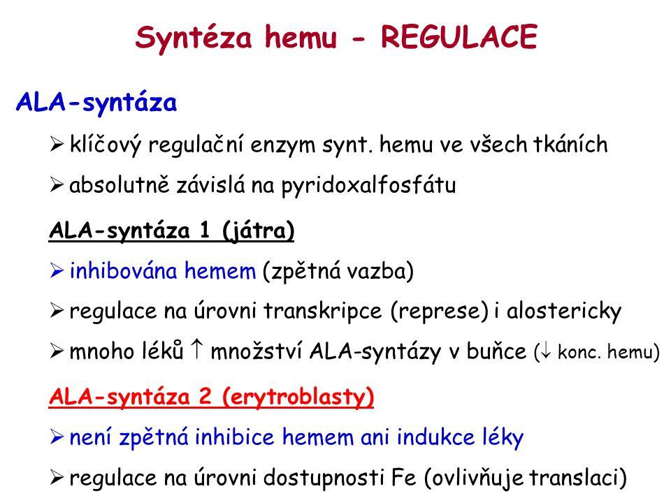 Syntéza hemu - REGULACE ALA-syntáza  klíčový regulační enzym synt. hemu ve všech tkáních  absolutně závislá na pyridoxalfosfátu ALA-syntáza 1 (játra