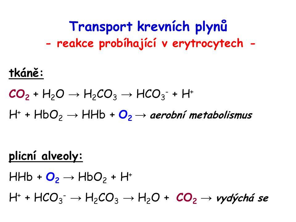 Transport krevních plynů - reakce probíhající v erytrocytech - tkáně: CO 2 + H 2 O → H 2 CO 3 → HCO 3 - + H + H + + HbO 2 → HHb + O 2 → aerobní metabo