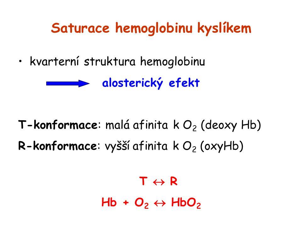Saturace hemoglobinu kyslíkem kvarterní struktura hemoglobinu alosterický efekt T-konformace: malá afinita k O 2 (deoxy Hb) R-konformace: vyšší afinit