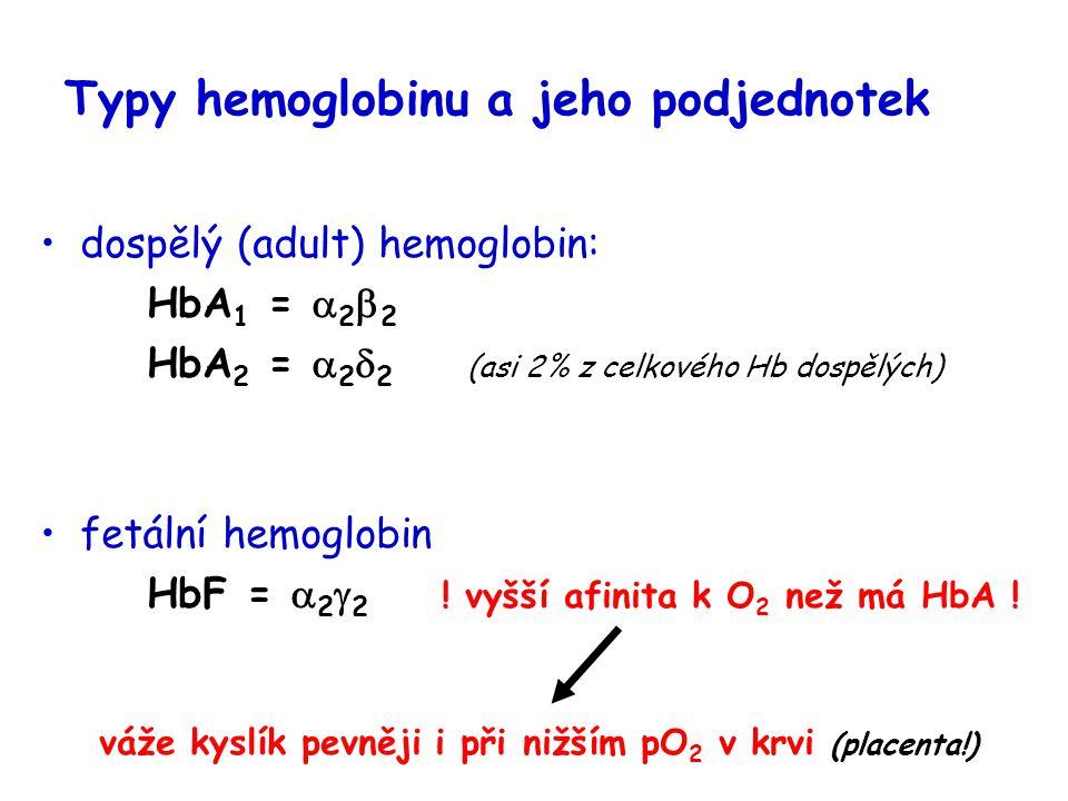 Typy hemoglobinu a jeho podjednotek dospělý (adult) hemoglobin: HbA 1 =  2  2 HbA 2 =  2  2 (asi 2% z celkového Hb dospělých) fetální hemoglobin H
