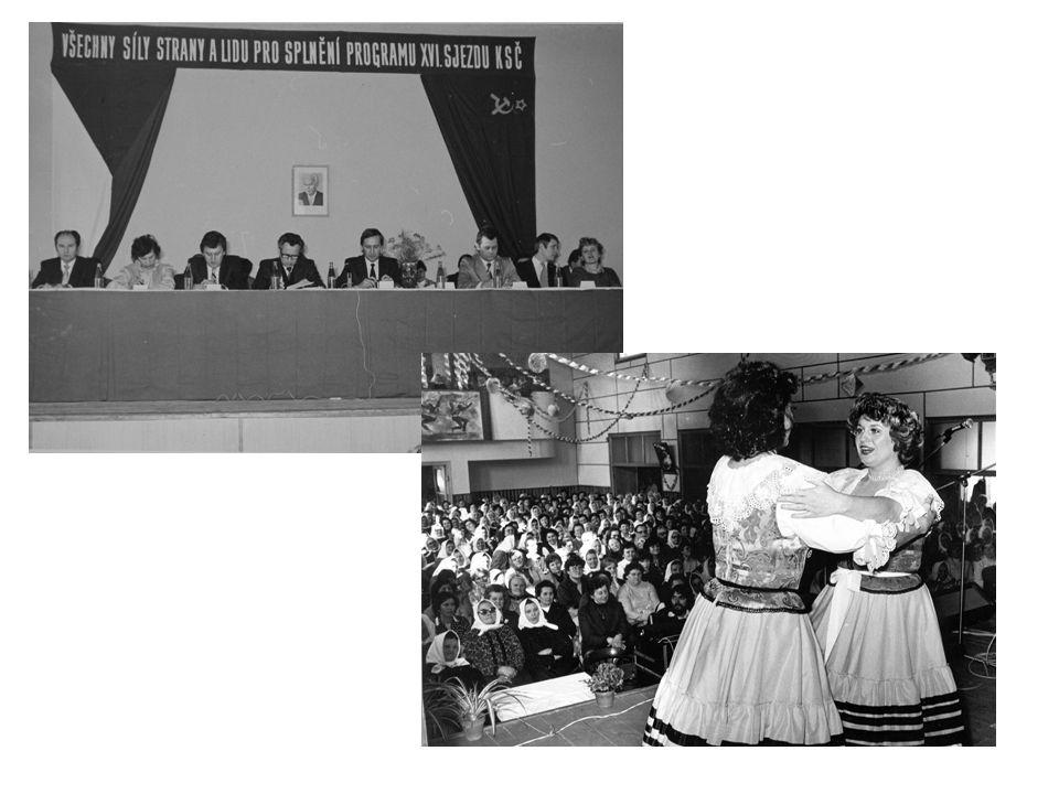 KD privatizovány, restituovány rušena okresní kulturní střediska, krajská okresní střediska po zrušení okresních úřadu – změna samosprávy - změna zřizovatelů kultur.