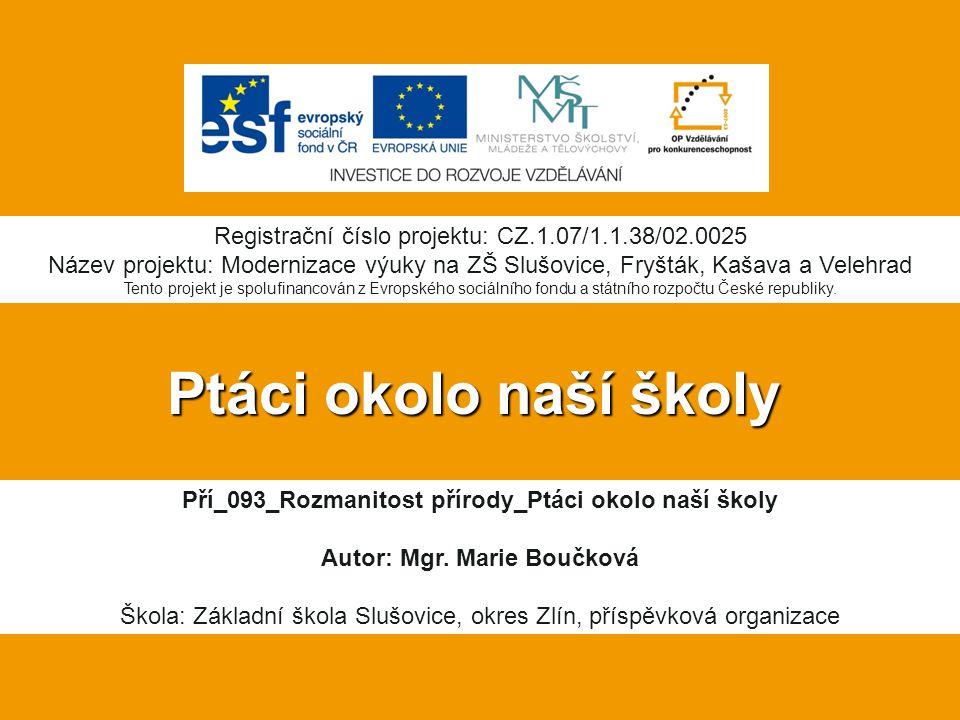 Krkavec velký Největší pěvec České republiky.