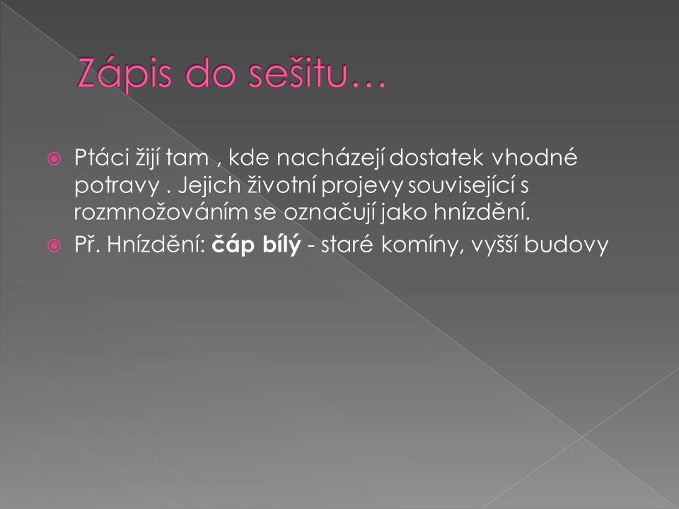  Učebnice  http://www.nasiptaci.cz/rhnizda.htm http://www.nasiptaci.cz/rhnizda.htm  http://www.prirodovedec.wbs.cz/Hnizdeni.