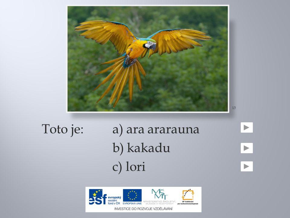Toto je:a) ara ararauna b) kakadu c) lori 15
