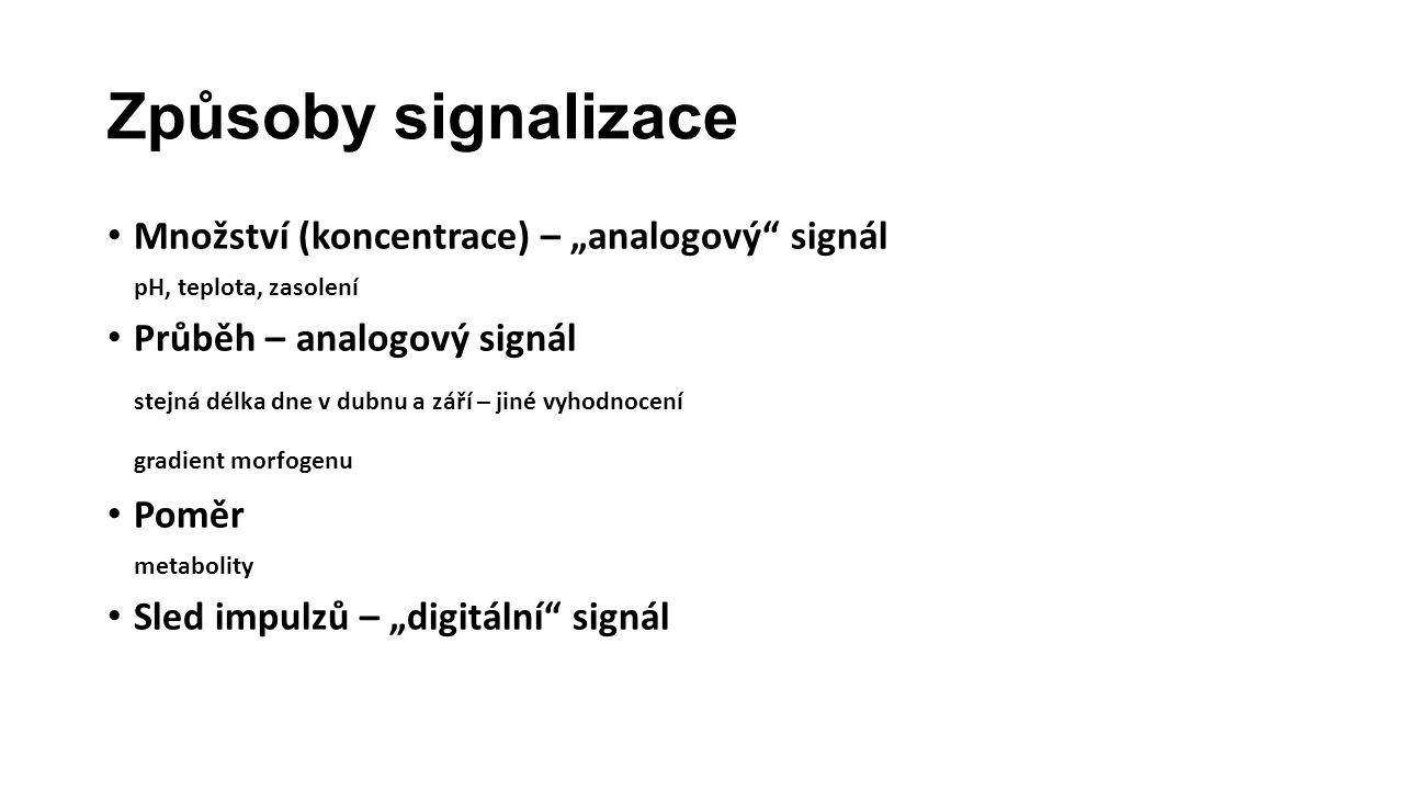 """Způsoby signalizace Množství (koncentrace) – """"analogový signál pH, teplota, zasolení Průběh – analogový signál stejná délka dne v dubnu a září – jiné vyhodnocení gradient morfogenu Poměr metabolity Sled impulzů – """"digitální signál"""