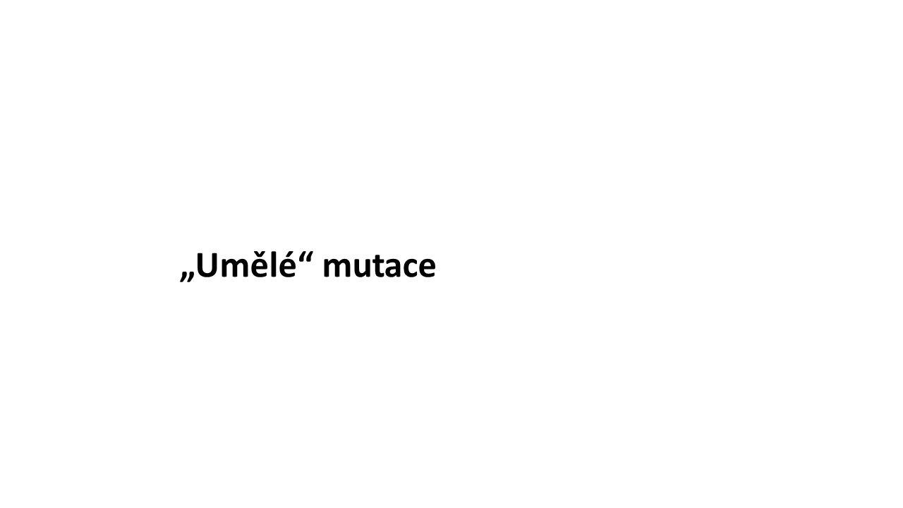 """""""Umělé mutace"""