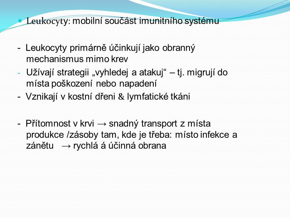 """Leukocyt y : mobilní součást imunitního systému - Leukocyty primárně účinkují jako obranný mechanismus mimo krev - Užívají strategii """"vyhledej a atakuj – tj."""