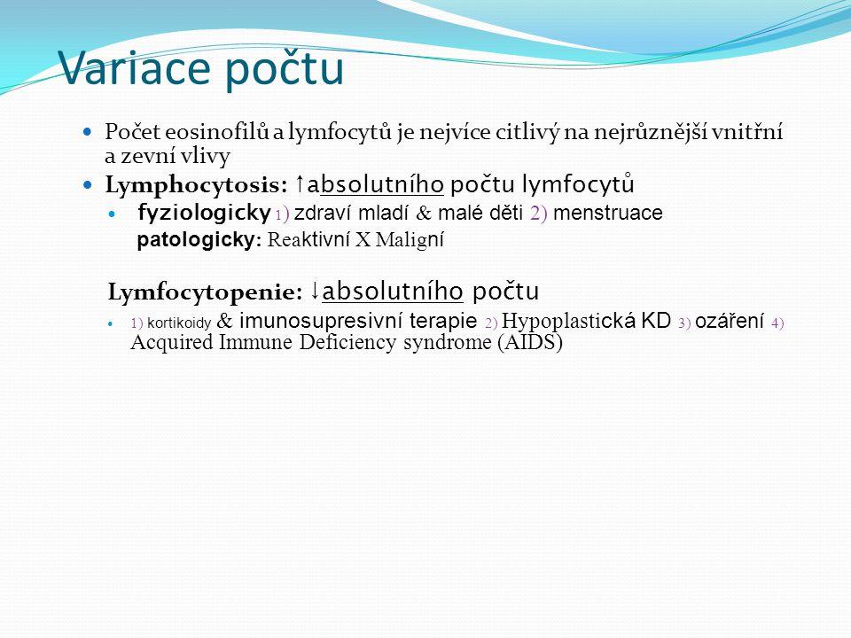Variace počtu Počet eosinofilů a lymfocytů je nejvíce citlivý na nejrůznější vnitřní a zevní vlivy Lymphocytosis: ↑ absolutního počtu lymfocytů fyziologicky 1 ) zdraví mladí & malé děti 2) menstruace patologicky: Reaktivní X Maligní Lymfocytopenie: ↓absolutního počtu 1) kortikoidy & imunosupresivní terapie 2) Hypoplastická KD 3) ozáření 4) Acquired Immune Deficiency syndrome (AIDS)