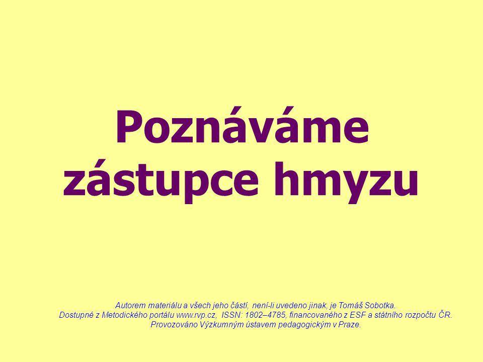 Poznáváme zástupce hmyzu Autorem materiálu a všech jeho částí, není-li uvedeno jinak, je Tomáš Sobotka. Dostupné z Metodického portálu www.rvp.cz, ISS