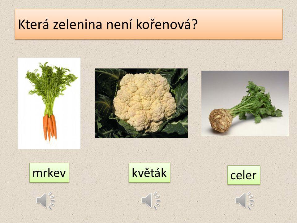 Najdi plodinu, která není zeleninou! pšenice pórek paprika