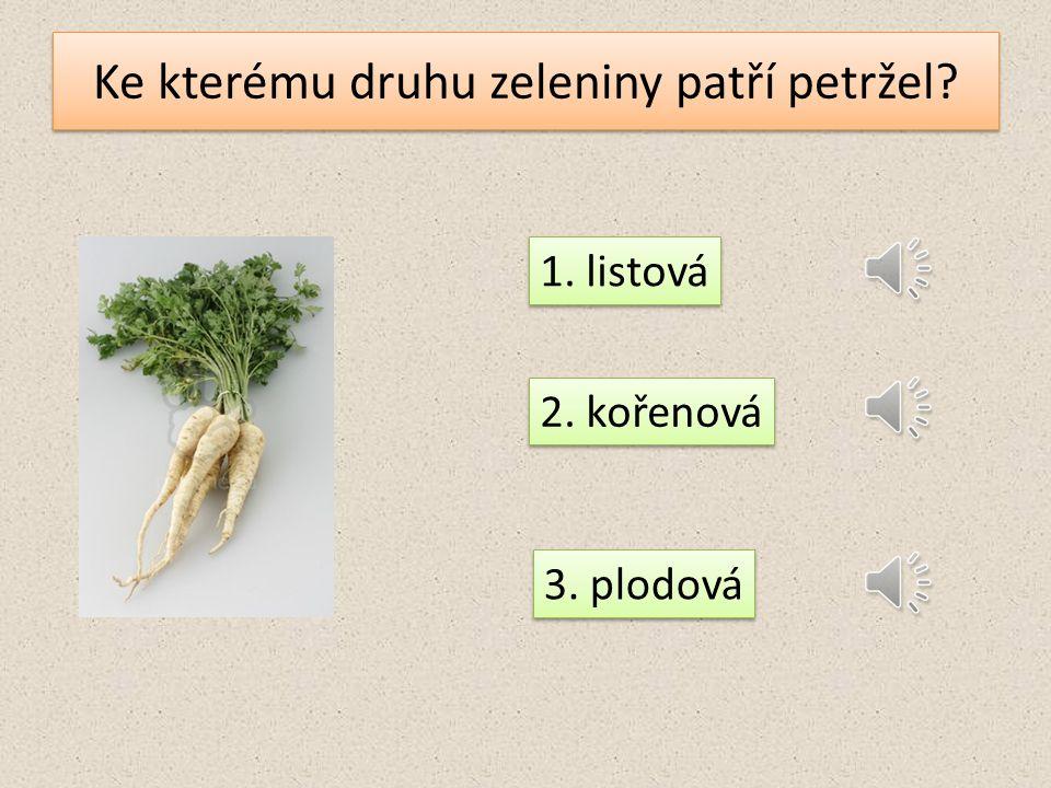 Co nepatří k zelenině cibulové? cibule salát hlávkový česnek